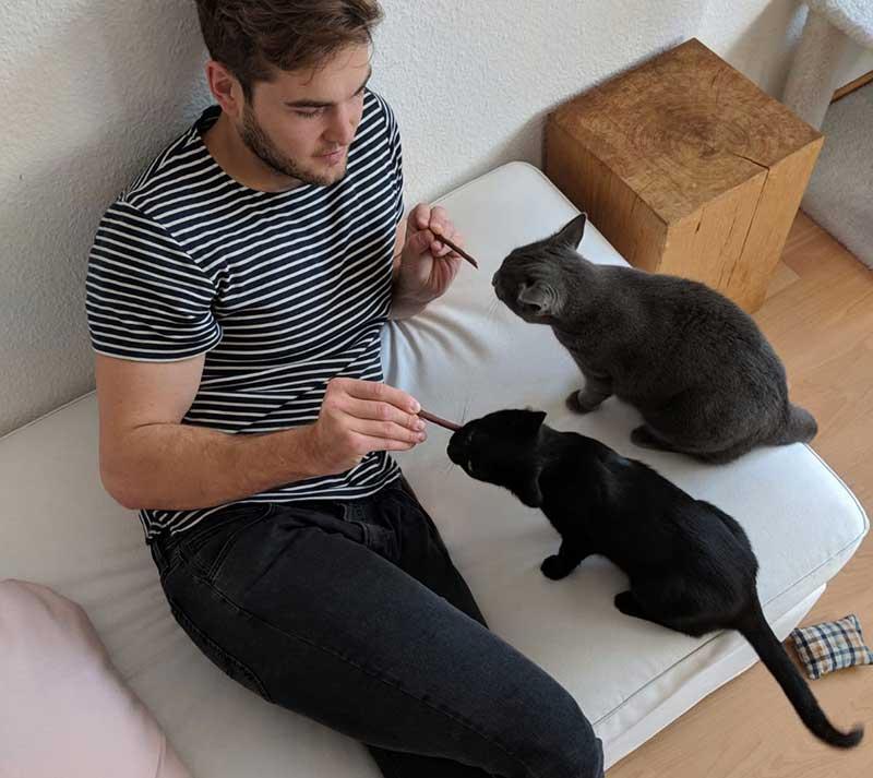 Josias mit zwei Pflegekatzen